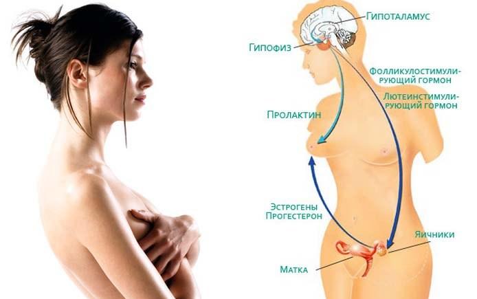симптомы гормонального дисбаланса